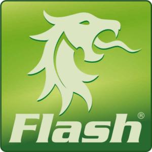 FLASH Logo Grün